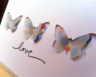 Butterflies-detail